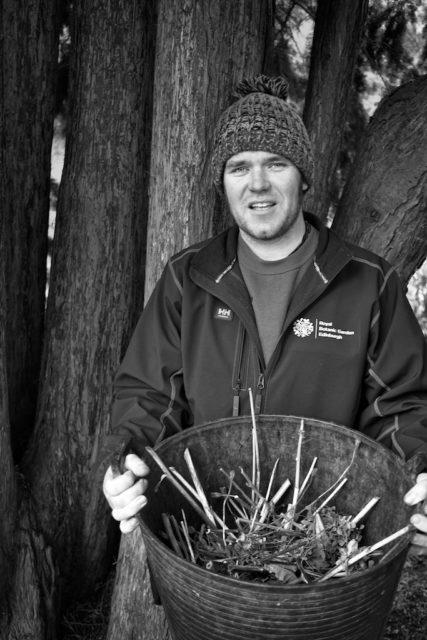 Robert Unwin working in the botanics