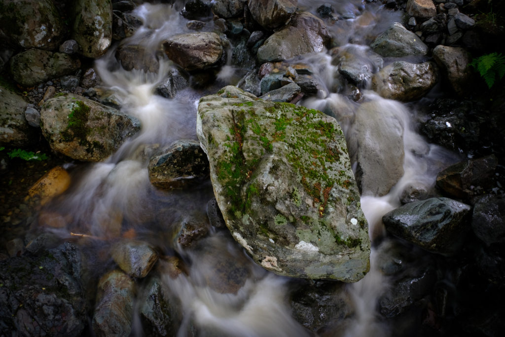 A rock in the stream (hand held)